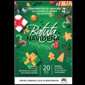 Concierto Banda de la Rozas, Madrid.